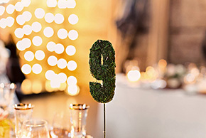 GreenBuildingWeddingSmall7