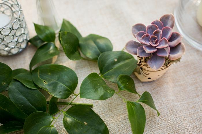 mini_succulent